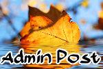 adminpost