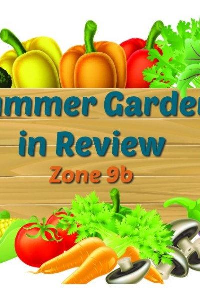 Summer Garden in Review – Zone 9b/10a