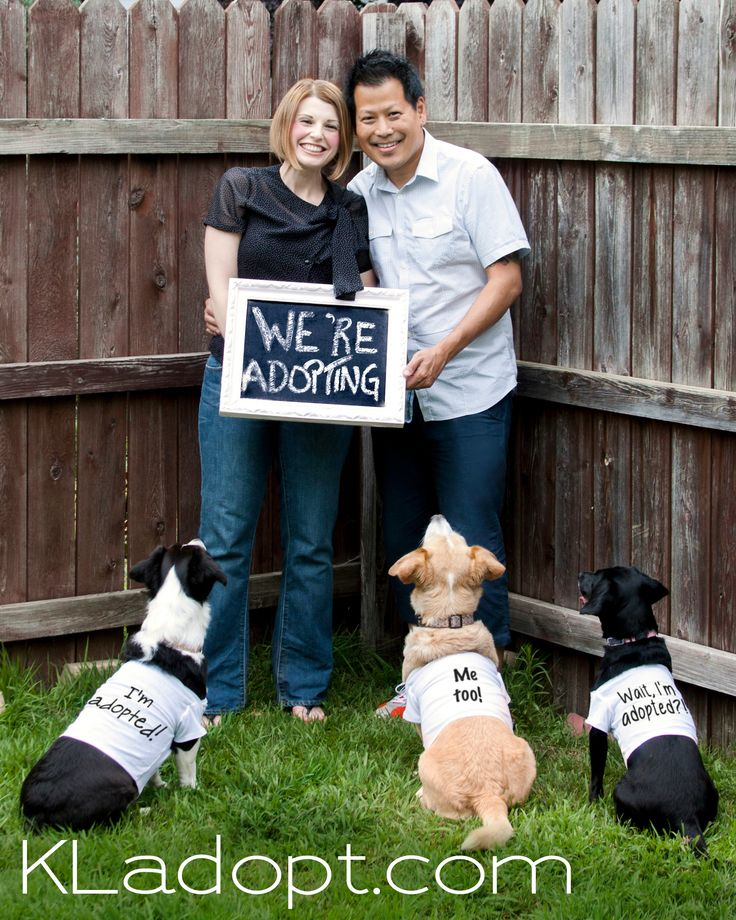 We\u0027re Adopting!\
