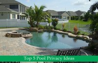Backyard Pool Privacy Ideas   Desainrumahkeren.com