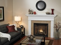 Madison Direct Vent Fireplaces American Hearth ...