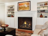 Madison Direct-Vent Fireplaces - American Hearth