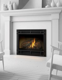 Slimline Direct Vent Gas Fireplace - American Heritage ...