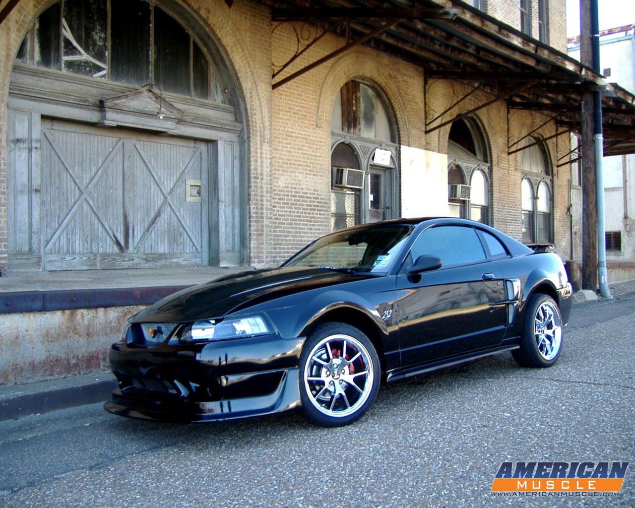 Chrome Web Store Wallpapers Cars Mustang Walpaper Impremedia Net