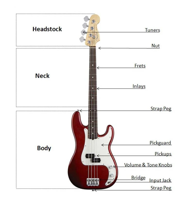 Bass Buyers Guide at AmericanMusical