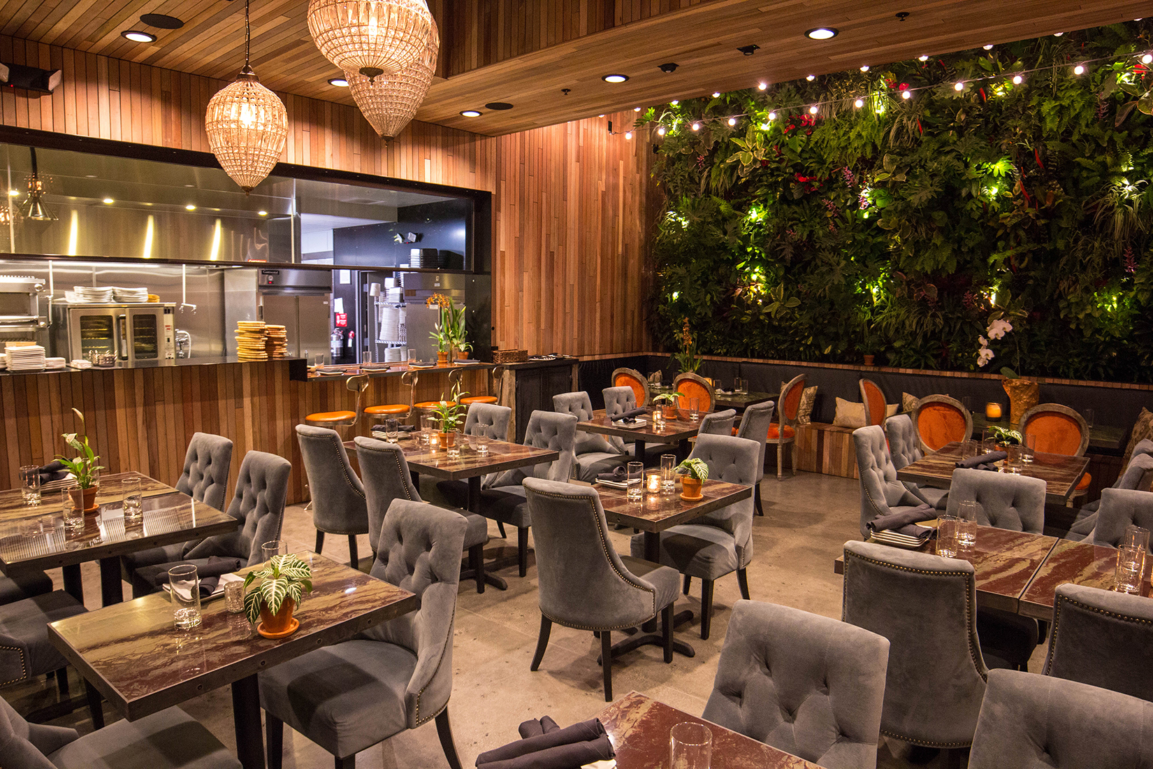 The Patio Group: Restaurant Development & Hospitality