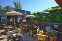 The Patio Group: Restaurant Development & Hospitality - ANI