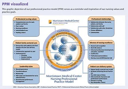 Adapting a professional practice model - American Nurse Today
