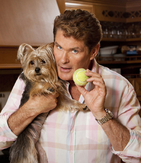david hasselhoff 280325 The Hasselhoffs Canceled by A&E After Two Episodes