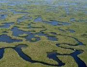 Las 10.000 Islas del Parque Nacional Los Everglades