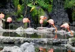 Jawa-timur-park-2-amerta-edutravel