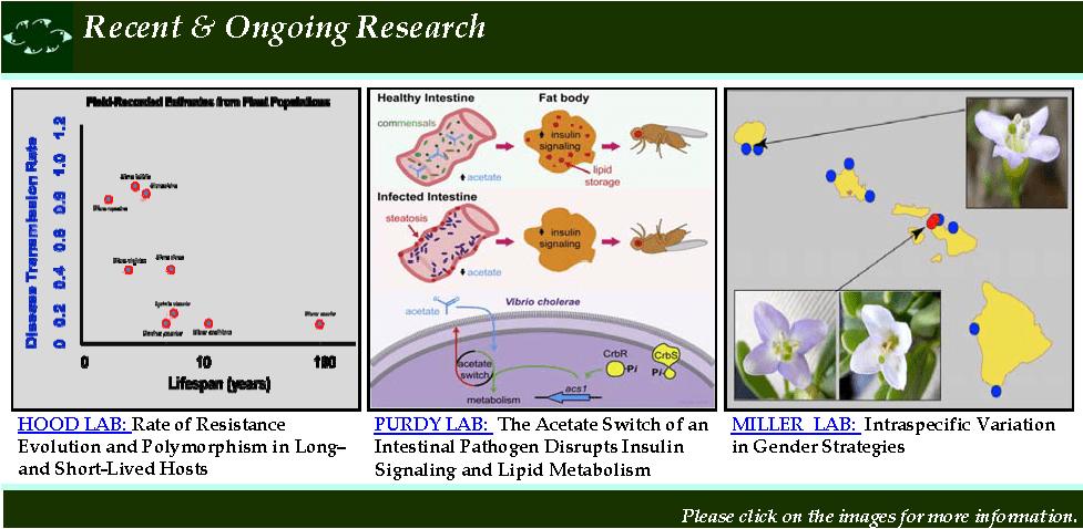 Jobs for biology majors?
