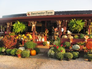 Be sure to visit the Sweetwater Farm while in Sugarcreek. This wonderful produce stand is located at 217 Buckeye St. SW, Sugarcreek