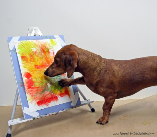 ammo the dachshund watercolor artist