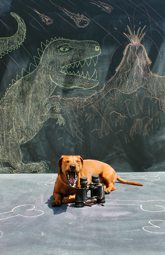 Imagination Hat - Ammo the Dachshund - Dinosaur Land