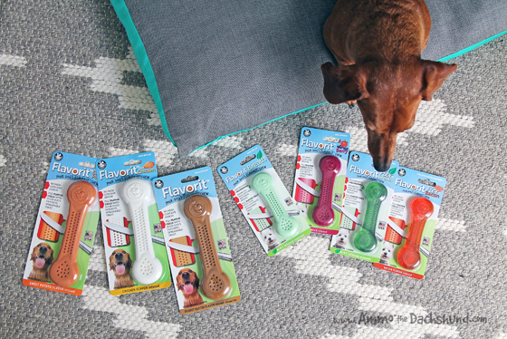 Nylon Dog Chew with an Extra Kick from @PetQwerks + A Giveaway