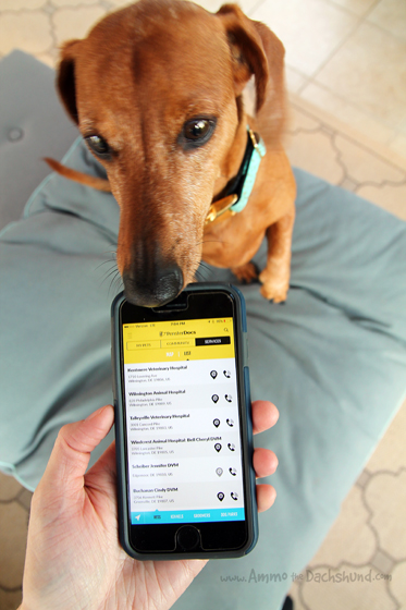 An App to Help You Manage All of Your Pet Documents + A Giveaway with PensterDocs #ad