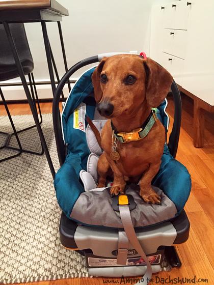 Certified Baby Gear Tester
