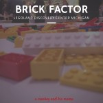LEGOLAND Discovery Center Michigan, Brick Factor.
