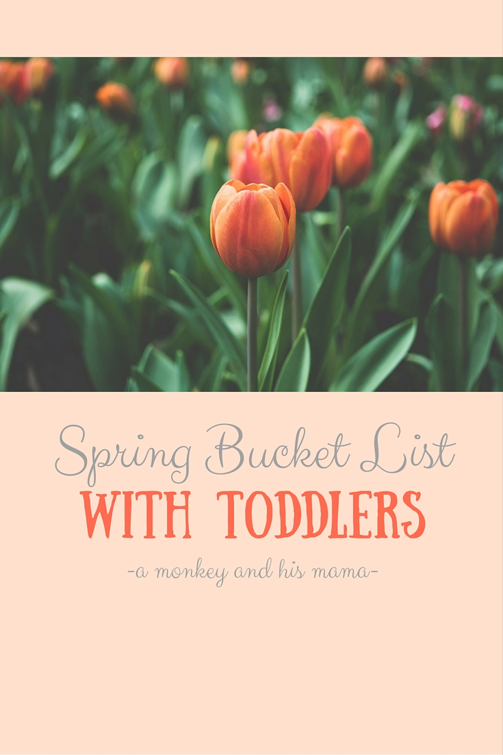 Our Spring Bucket List with Toddlers // a monkey and his mama