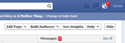 Using Facebook to Promote Your Blog - Use the in-built insights (analytics) to see who's viewing/interacting with your page