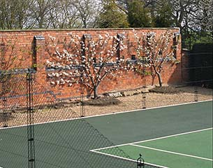 Tennis Court Construction - Victorian brick wall with obelisk tennis court fencing by AMSS