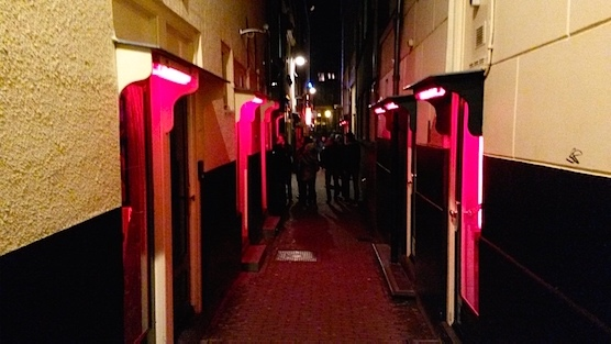 What's the difference between the red lights and the purple or blue lights in Amsterdam's Red Light District