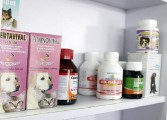 Médicos dan recetas de uso veterinario ante falta de medicinas