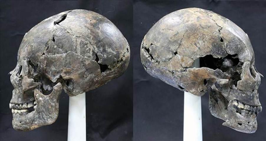 Alien Skull Korea