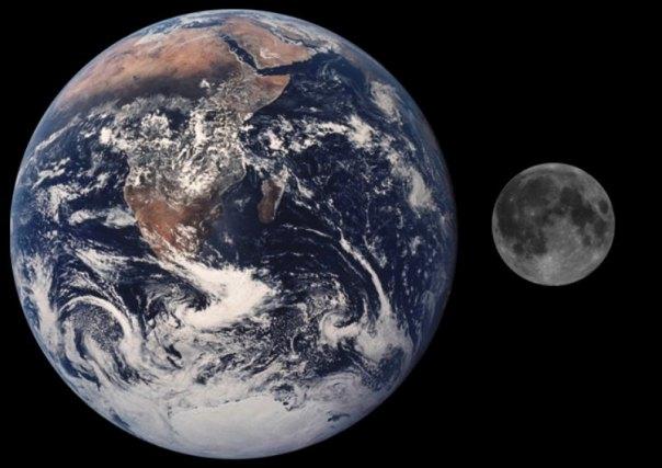 Si pudiéramos desenrollar todas las hebras de ADN que hay en nuestro cuerpo y las colocáramos una detrás de otra, la última molécula se encontraría a una distancia ¡500.000 veces superior a la existente entre la Tierra y la Luna!. En la imagen, comparativa a escala entre la Luna y la Tierra. (Public Domain)