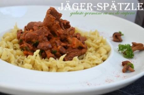 Teo-s Kitchen - Jäger Spätzle – Galuste nemtesti cu sos de ciuperci