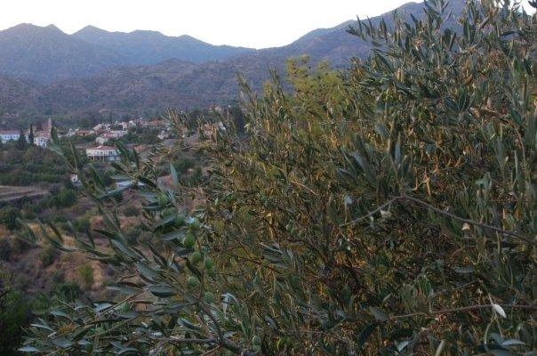 Ora Village, Cyprus