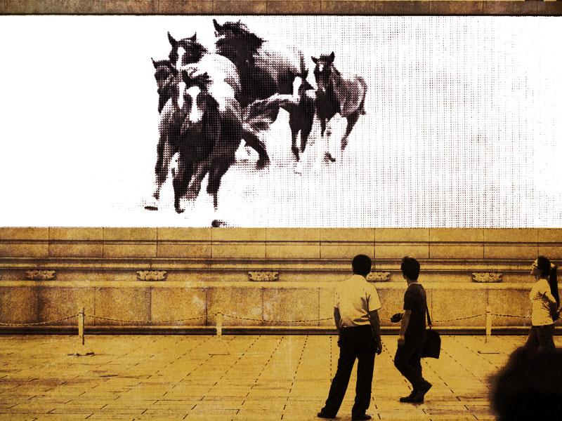 Il-cavallo-che-non-ha-vinto-la-corsa