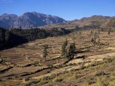 Долина разделена на огороды-заплатки.