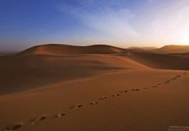 В песках очень легко потерять нужное направление.