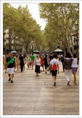 Рамбла - пешеходная улица в центре города.