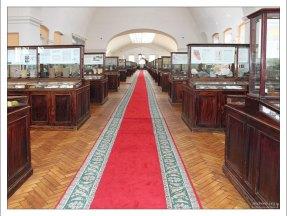 Геологический музей в Научно-исследовательском геологическом институте им. А. П. Карпинского.