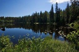 Игуменское озеро посередине острова Валаам.