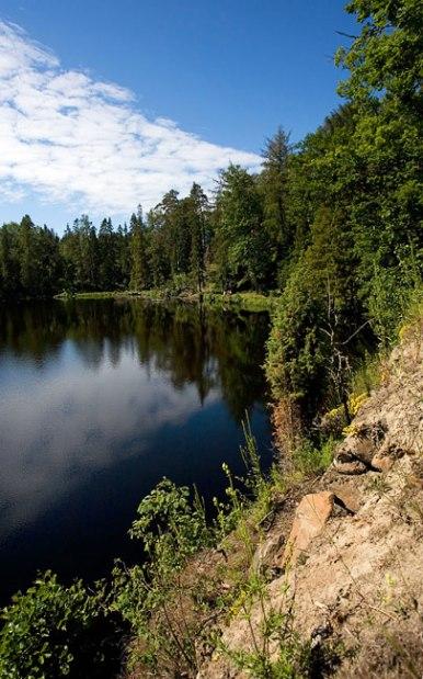 Северная часть Игуменского озера и сибирские лиственницы.