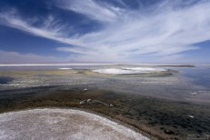 Островки соли в лагуне Chaxa. Salar de Atacama.