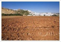 Вспаханное поле на подъезде к Аркосу. Аркос-де-ла-Фронтера, Андалузия, Испания.