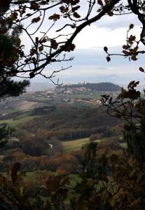 Вид на деревушку на холме сквозь дубовые ветки.