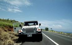 По дороге в Kohala - северную часть острова.