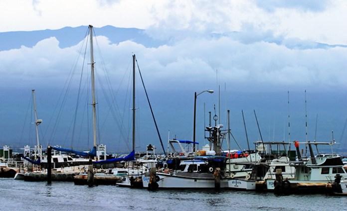 Яхты и рыболовные суда в гавани Maalaea.