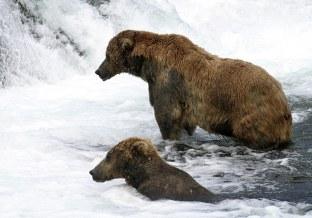 Он и Она в ожидании лосося.