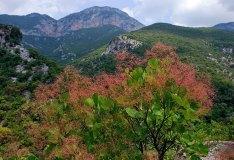 В горах Parnonas Mountains.