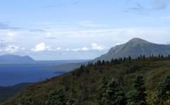 Вид с горы Dumpling Mountain на Iliuk Arm.