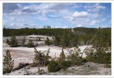В отличие от большинства других гейзеровых бассейнов в парке, вода в долине Норриса (Norris Geyser Basin) кислая.
