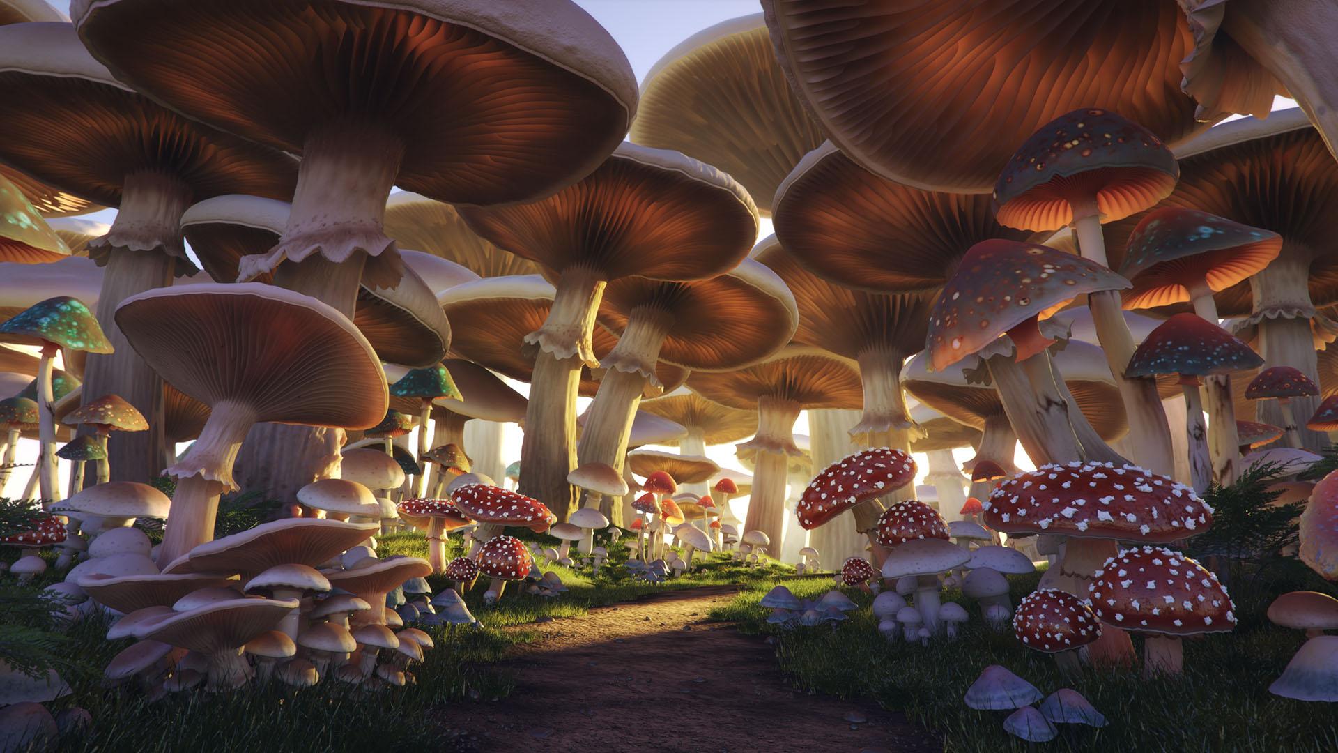 3d Animated Nature Wallpaper For Mobile Mushroom Forest Andrei Serghiuta Freelance 3d