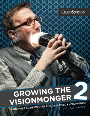 Growing the Visionmonger ebook cover